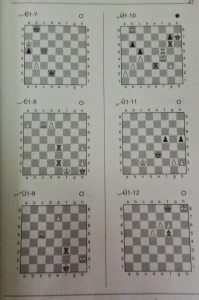 Six positions from Dvoretsky's book